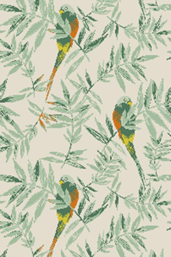 Parakeets PAR0044