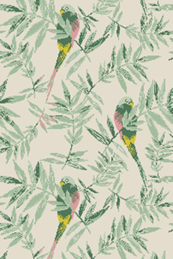 Parakeets PAR0047